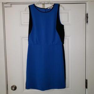 (Loft) Royal Blue Dress